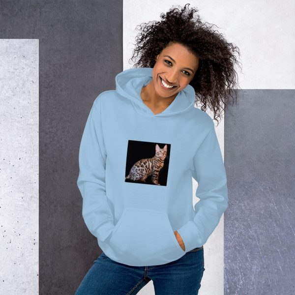 unisex heavy blend hoodie light blue front 60c8890f6430f